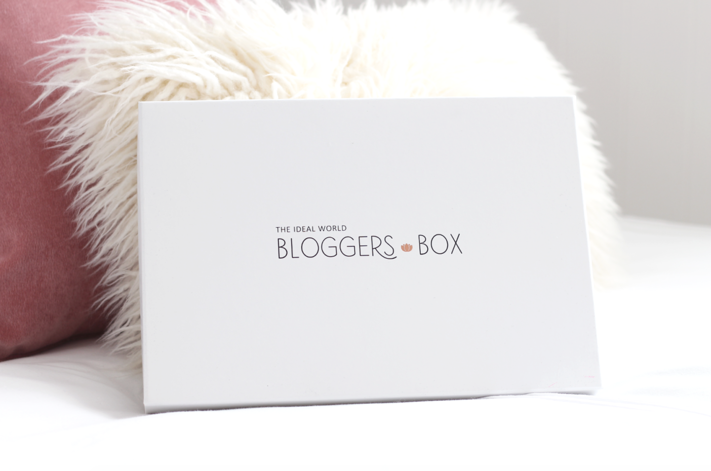 IDEAL WORLD'S BLOGGERS BOX